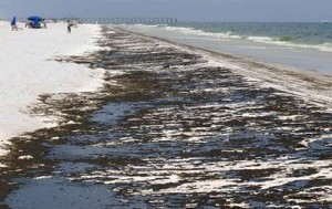 Pensacola florida whitest beaches in the world soaked with bp oil spill pollution
